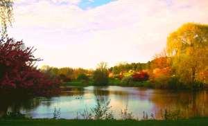 Whitnal Lake_1